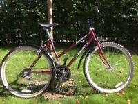 15 Speed ladies (or mens) Mountain bike