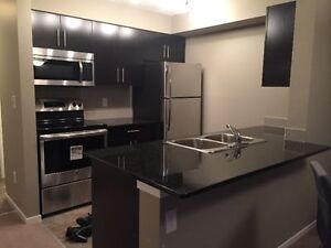 Erin Ridge Brand New Condo Fully Furnished For Rent