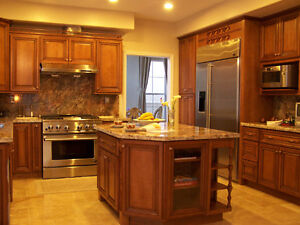 Solid Wood Kitchen Cabinets wholesale price to public