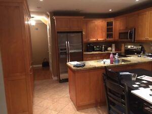 Kitchen Cabinets and Granite Countertop