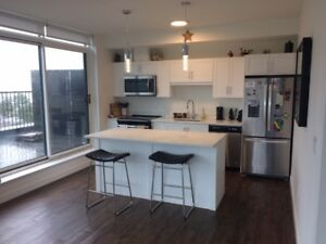 1 BEDROOM PENTHOUSE SUITE- JAN 1st- 800 sqft TERRACE