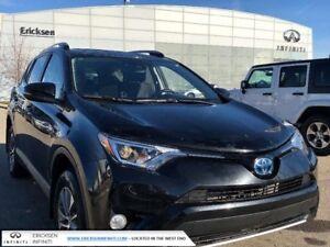 2017 Toyota RAV4 Hybrid LE/HYBRID/BACK UP CAMERA/SUNROOF