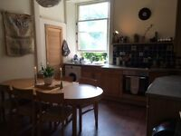 Lovely, double room available to rent in a friendly flat in Marchmont from 3/7/2017 - 1/9/2017 only