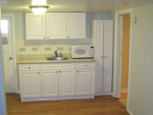 BRIGHT and HAPPY 2 bed. basement in upscale home near Dewes.