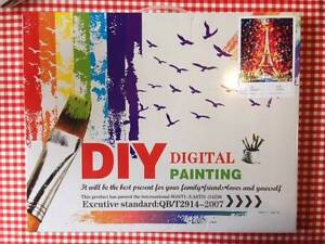 Buy 2, Get 1 free : Acrylic Paint by Numbers 40cm x 50cm Hornsby Hornsby Area Preview