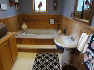 4 Jet Bath 60 inch tub and matching pedestal sink
