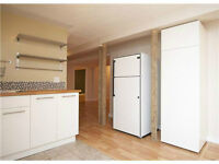 Newly Renovated Large 2 bedroom lower suite, almost 1200 ft