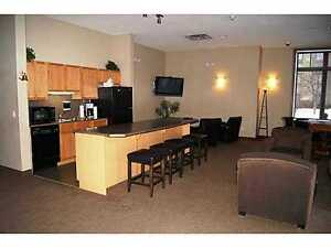 LUXURIOUS 2 BEDROOM EXECUTIVE CLASS Edmonton Edmonton Area image 7