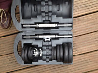Cast Iron Dumbell Set in Carrying Case