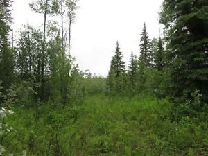 Building Lot in quiet location - zoned H1 (Small holdings)