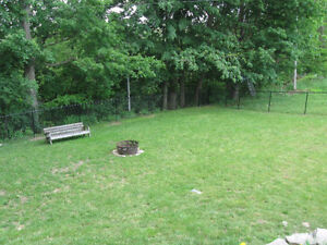 Chain Link Fence Professionals - It's ALL We Do! Free Quotes! Cambridge Kitchener Area image 5