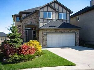 Beautiful walkout basement for rent All Utilities Include