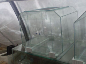New 53 Gallon Cube Style Rodent, Reptile or Plant Tank