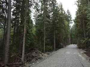 5 to 10 Acre Lots in the Blaeberry Valley Revelstoke British Columbia image 5
