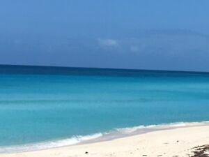 Superbe condo à louer à Bimini, Bahamas!!