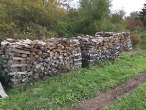dry hard wood for sale