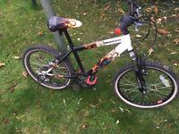 20''Bike