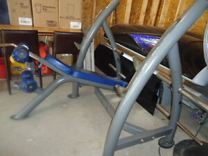 Decline bench, commercial quality... no longer used in our gyms