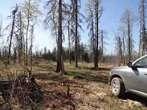 Thorhild County 10 acres land for only $67,500