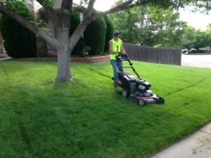 Lawn Maintenance - Snow Removal - Aeration - Eavestrough cleanin