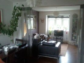 Double room to let to female