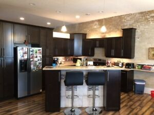 Apartment for Rent - Souris, MB - Available November 1.