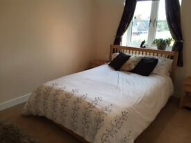 clean double room in shared house to let