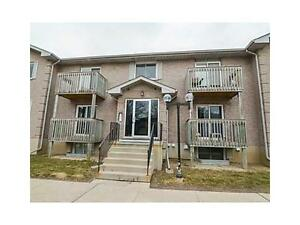 Bright Clean Carpet Free Condo Available March 1st Kitchener / Waterloo Kitchener Area image 10