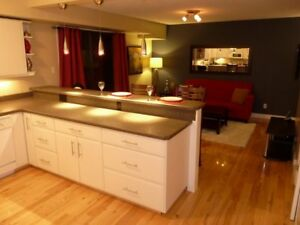 Beautifully Furnished 1 bedroom Exec Condo - Available Mar 1
