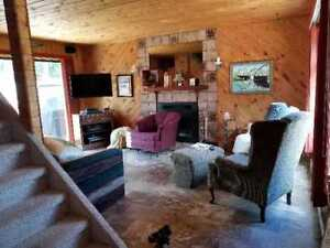Emma Lake cabin steps from the beach For Sale
