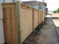 College Plus Landscaping- Fence,Deck,Concrete,Sod,Lawn,Cleanup