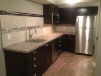 Nice Newly finished basement suite Airdrie Quick Calgary commute