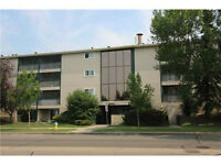 MIllwoods 1bed/1bath apartment Take over lease