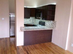 1 Bedroom Apartment downtown Kitchener