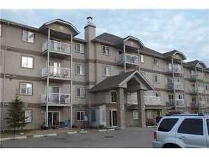 Spruce Grove 2 Bedroom Condo for Rent with Incentive!!!