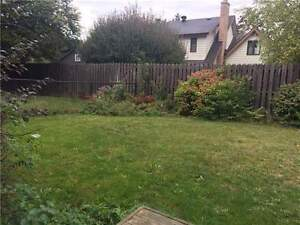 Extremely Clean & Rare Walkout Basement in Central Newmarket London Ontario image 10