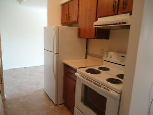 Free Cable! $300 Deposit! Large Spacious One Bedroom Suites!!