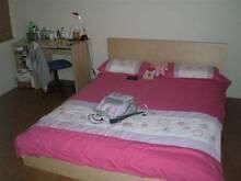Semi Ensuite Room - Victoria Park - Single or Couples ok East Victoria Park Victoria Park Area Preview