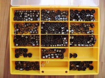 890 x Größenreiter Größenfinder Ringe Kinder Gr. 56-134