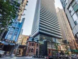 Beautiful Downtown Studio-Available July-August (2 months)