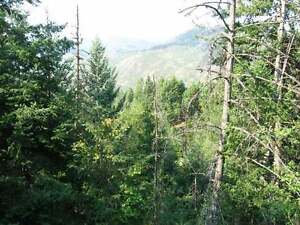 Small acreage with magnificent views!