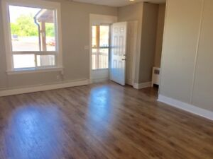 Completely Renovated 3 bedroom Apartment Unit Downtown!