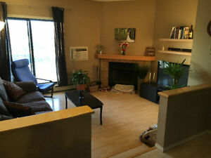 Two bedroom, pet friendly, renovated rental condo near U of M.