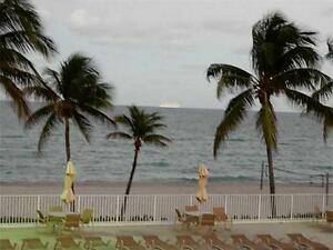 Gorgeous 1 Bdr. Condo Apartment in Hollywood, Florida For Rent
