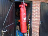 ULTIMATE PRO BOXING PUNCH BAG AND GLOVES