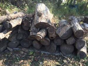 firewood, slabs, chopping blocks Joyner Pine Rivers Area Preview
