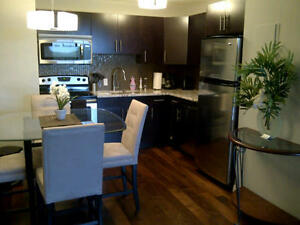 St Vital, Furnished 1 bdrm, Avail Sept 30th, $1650/mth, $500/wk