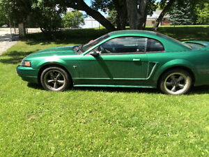 2000 Ford Mustang Base Coupe (2 door)