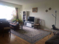 Immediate Lease Transfer or Sublet - 3 1/2 Large & Sunny