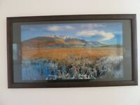 Two Framed Photographic Prints